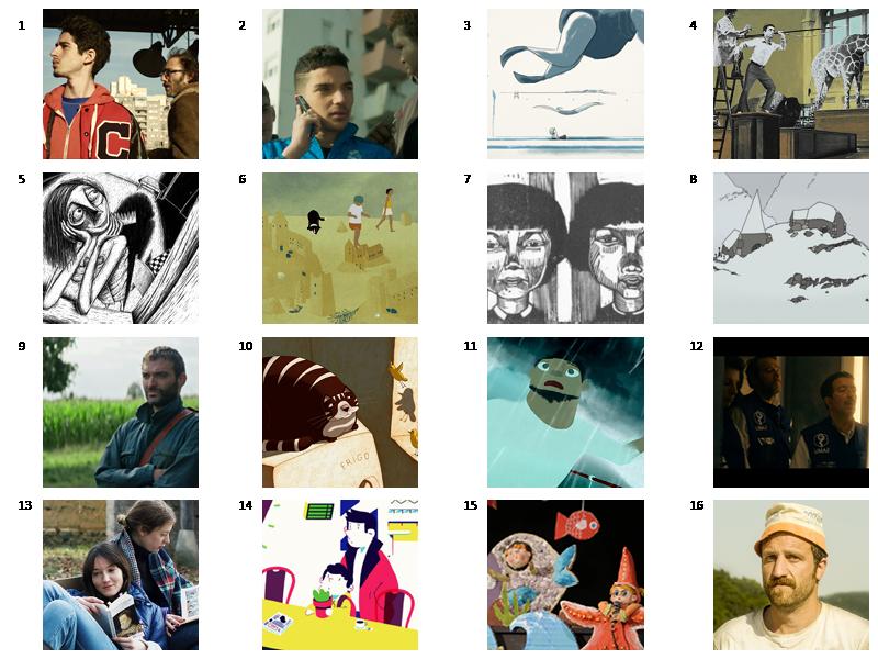 16 nouveaux films au catalogue Mèche Courte 2019 !