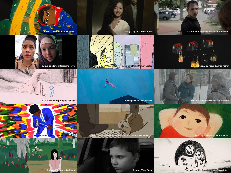 15 nouveaux films au catalogue Mèche Courte 2020 !