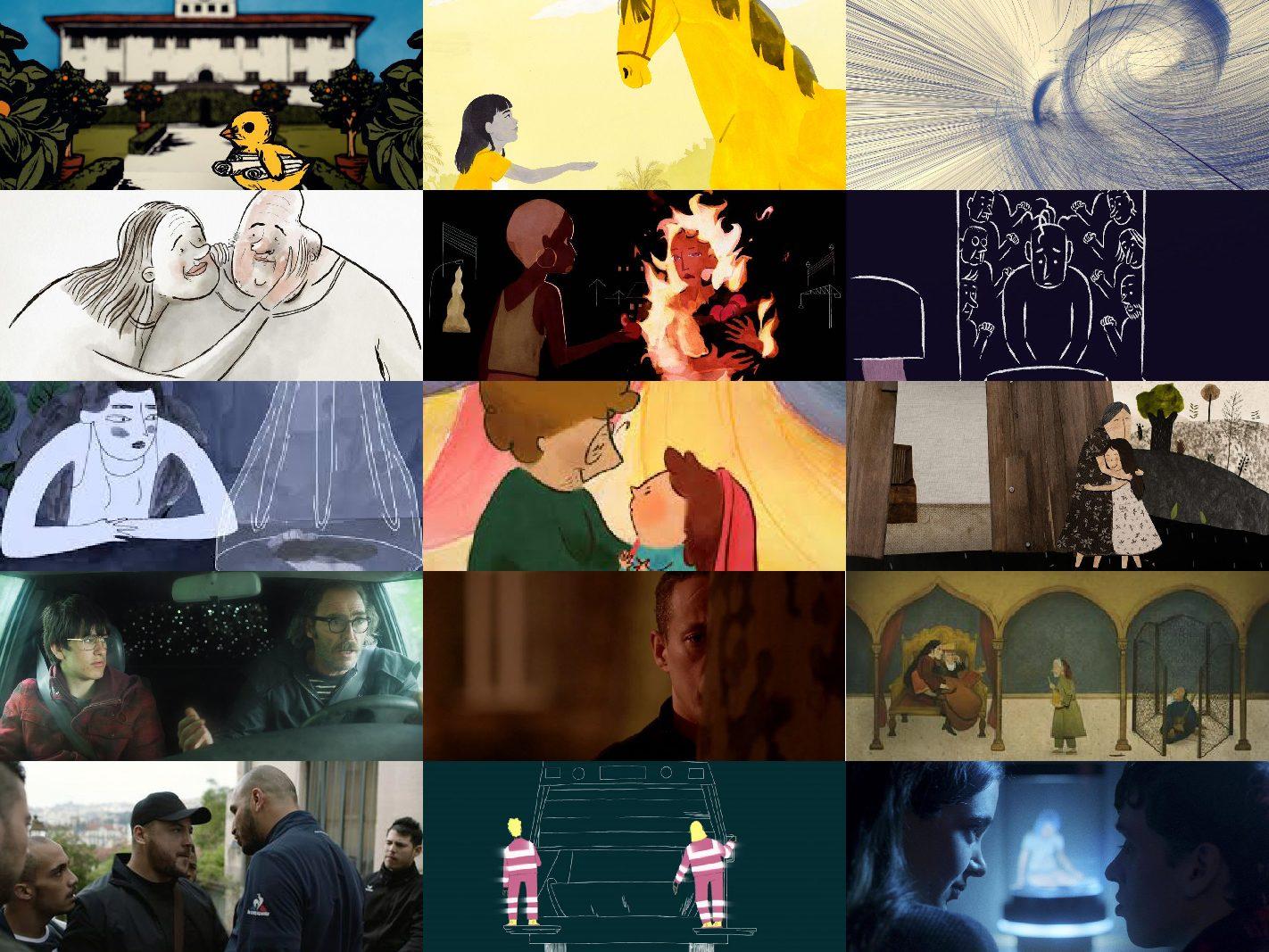 15 nouveaux films au catalogue Mèche Courte 2021 !
